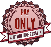 Pay only if you like essay
